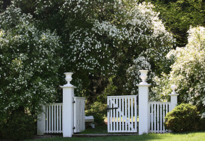 We installed home vinyl fence with gate posts.