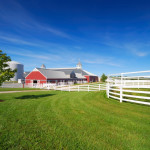 We install wood pasture fencing for farms and ranches