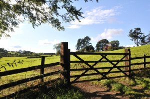 ranch fence installation