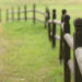 FENCE POST INSTALLATION WITH FOAM