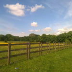 Learning how to maintain wood fencing is vital to helping it last