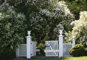 Horse Fence Installation
